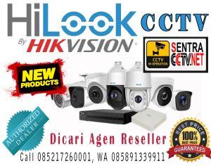 Hilook CCTV